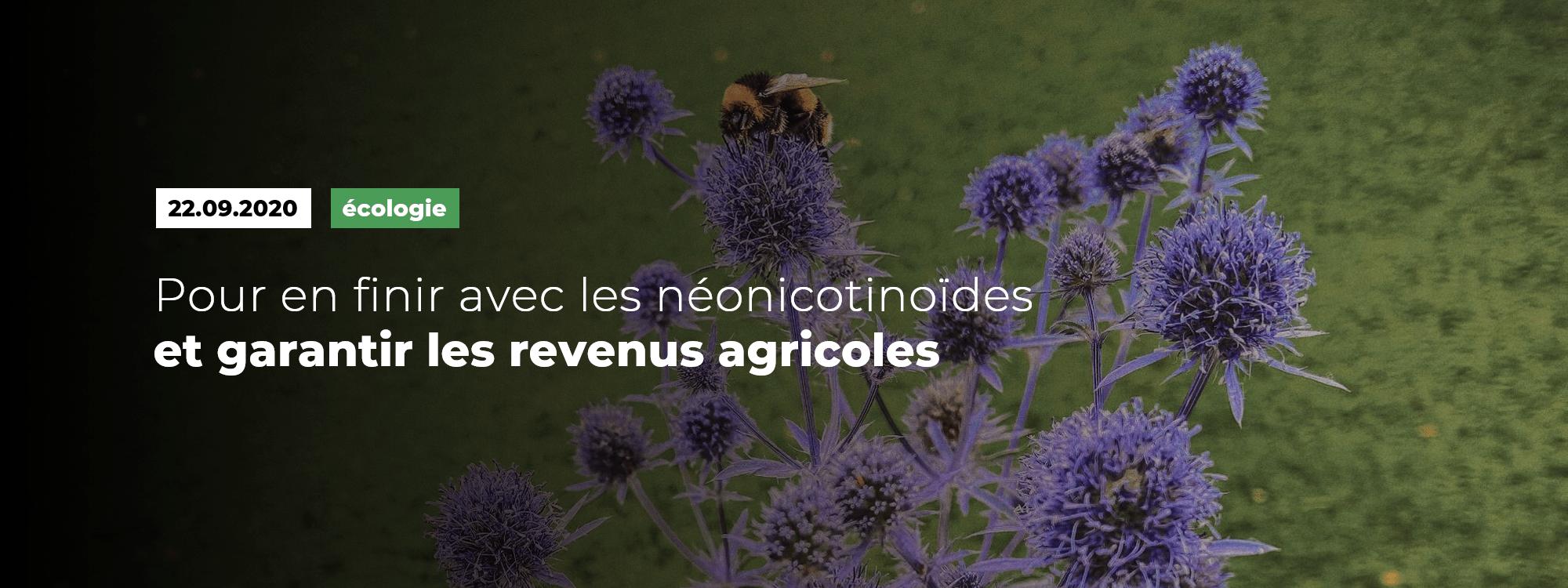 Pour en finir avec les néonicotinoïdes et garantir les revenus agricoles